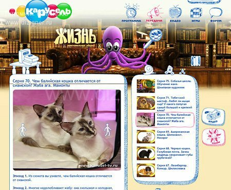балинез на выставке Инфокот и телеканале Карусель