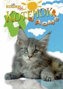 журнал о кошках